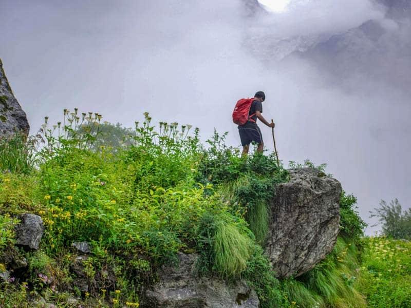 Trek to Valley of Flowers