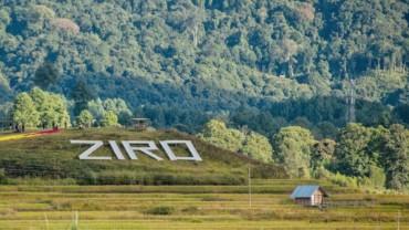 Ziro Music Festival